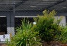 Asquith Chainlink fencing 13