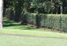 Asquith Chainmesh fencing 11
